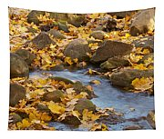 Autumn Slipping Away 0437 Tapestry