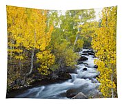 Autumn Stream V Tapestry