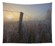 Autumn Sunrise Over Hoar Frost-covered Tapestry