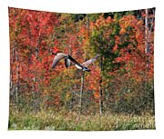 Autumn Vermont Geese And Color Tapestry