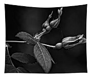 Awakening Monochrome Tapestry