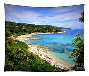 Azure  Tapestry