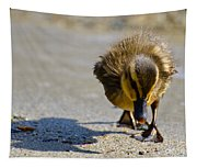 Baby Duck Tapestry