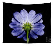Backside Of A Blue Flower Tapestry