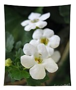 Bacopa Named Snowtopia Tapestry