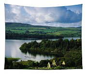 Ballindoon Abbey, Lough Arrow, Co Tapestry