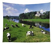 Ballyhooley, Co Cork, Ireland Friesian Tapestry