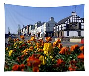 Banbridge, Co. Down, Ireland Tapestry