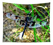 Banded Pennant Dragonfly Tapestry