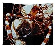 Barbershop Shrimp Tapestry