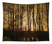 Fall Trees On A Lake Tapestry