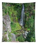 Barr Creek Falls Tapestry