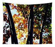 Bathed In Sunlight Tapestry