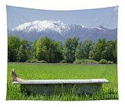 Bathtub On A Green Field Tapestry