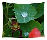 Beads Of Life Tapestry