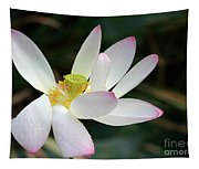 Beatutiful Wet Lotus Tapestry
