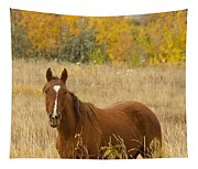 Beautiful Chestnut Horse Tapestry