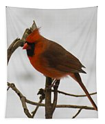 Beautiful Cardinal Tapestry