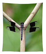 Beautiful Dragonfly Tapestry