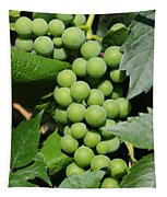 Beautiful Grapes Tapestry