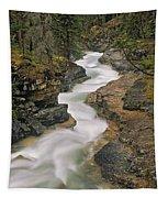 Beauty Creek, Banff National Park Tapestry