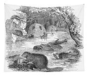 Beavers Tapestry
