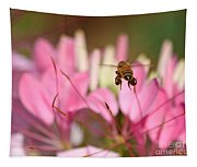Bee In Flight Over Cleome Flower Tapestry