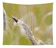 Beetle On The Wheat Tapestry