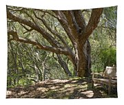 Bench And Tree In Cambria II Tapestry