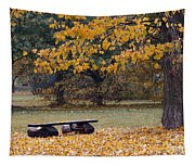 Bench In The Autumn Landscape Tapestry