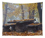 Benches And Table In Autumn Tapestry