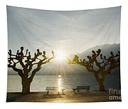 Benches And Trees On The Lakefront Tapestry