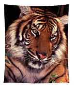 Bengal Tiger In Thought Tapestry
