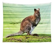 Bennets Wallaby  Tapestry