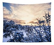 Bergen Winter Tapestry