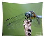Big Eyes Blue Dragonfly Tapestry