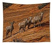 Bighorn Sheep, Zion National Park, Utah Tapestry
