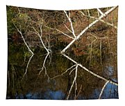 Birch Lake Reflections Tapestry