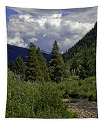 Bird Over Vail 1 Tapestry