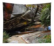 Birdrock Waterfall Tapestry