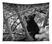 Black Bear Cub Tapestry
