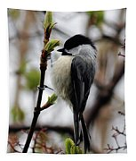Black-capped Chickadee On Staff Tapestry