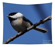 Black-capped Chickadee Tapestry