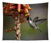Black Chinned Hummingbird  Tapestry