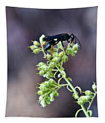 Black Flower Feeding Wasp Tapestry