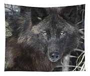 Black Timber Wolf Tapestry