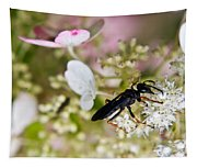 Black Wasp 1 Tapestry