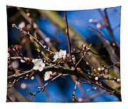 Blooming Tree With White Flowers Tapestry