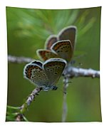 Blue 2 Together Tapestry