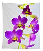 Blue Charm X Aridang Blue Orchid - 1 Tapestry